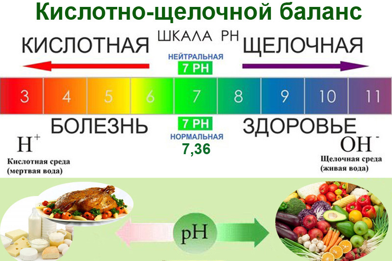 ph-кислотные и щелочные продукты