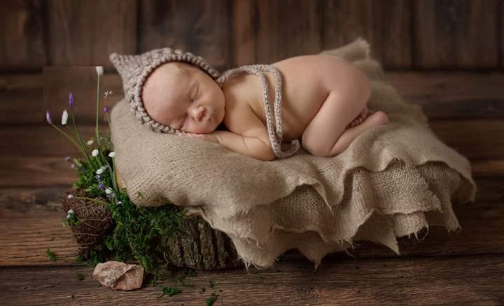 термин «полифазный сон» стал известным только в начале ХХ века