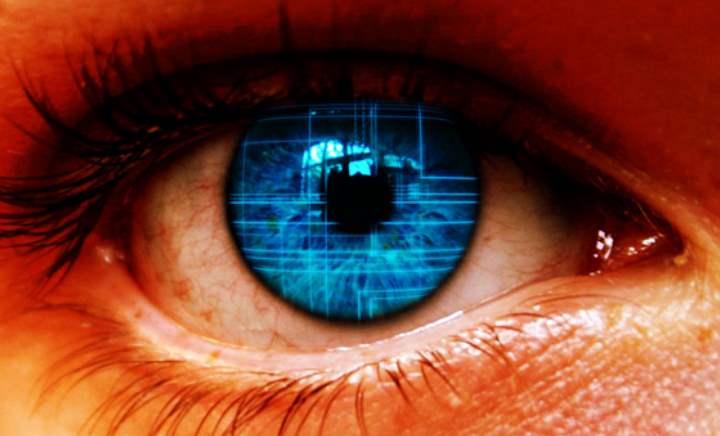 Глаза имеют маленькие размеры и вес