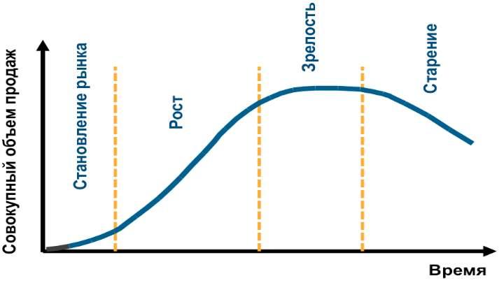 этапы «жизни бизнеса или развития компании»