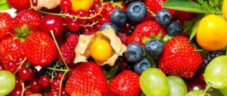 Всемирная Организация Здравоохранения рекомендует употреблять ежедневно 5 порций овощей и фруктов