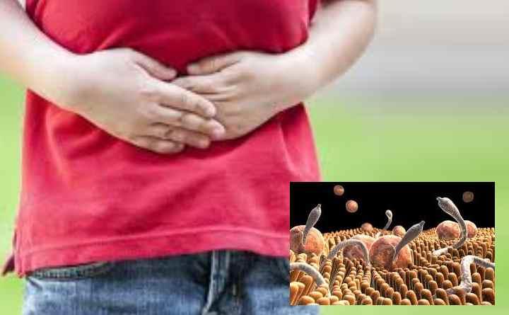 Многие паразиты обитают в нашем кишечнике и питаются той же пищей, что и мы