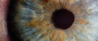 Удивительные способности мозга, которые позволяют скрывать несовершенство нашего зрения