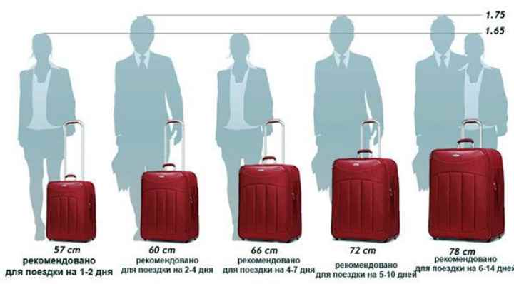 чемоданы могут быть маленькими, средними, большими