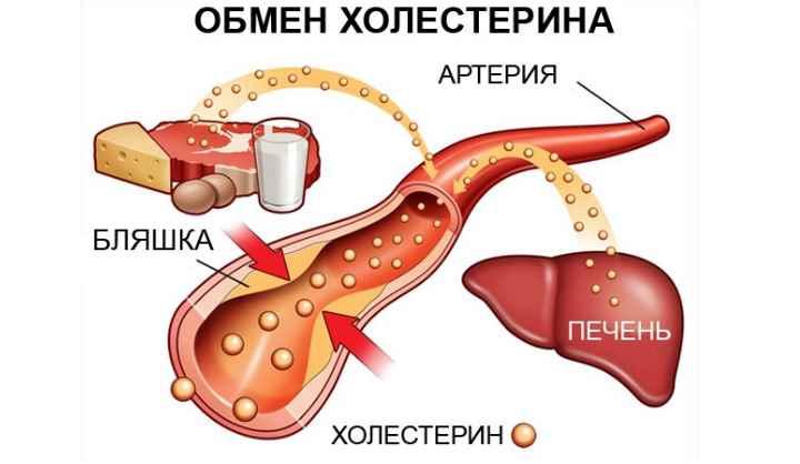 Включите в свой рацион жиры Омега-3 и коэнзим Q