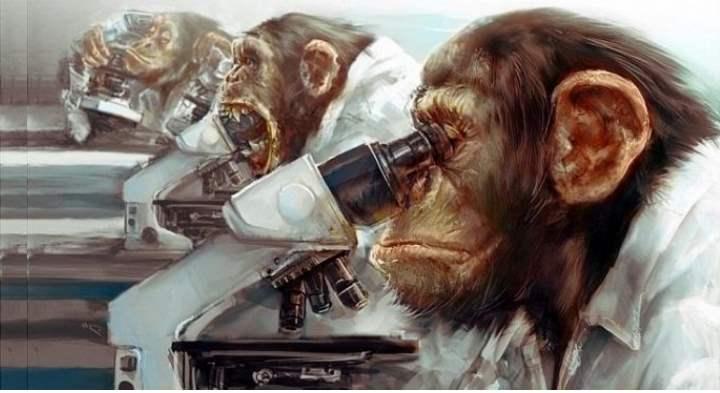 основатель эволюционной теории человека