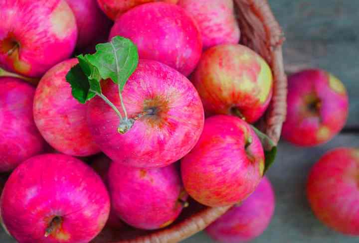Самыми полезными тут естественно будут яблоки зимних сортов, например, антоновка