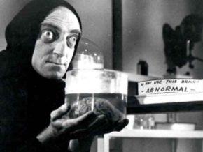 Сюжет фильма повествует о внуке доктора Франкенштейна