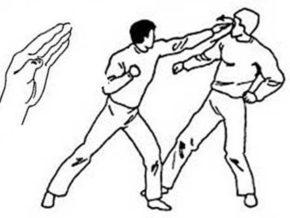 Ударять необходимо ребром ладони по переносице