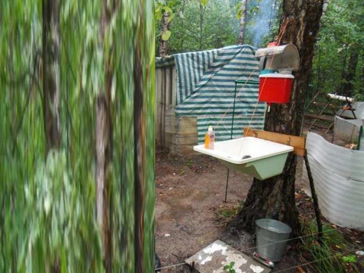 Как жить в лесу: пособие для тех, кто решил уйти от городской жизни