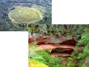 Через пару лет в этой местности наблюдалось обмеление леса