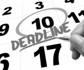 календарь сроков