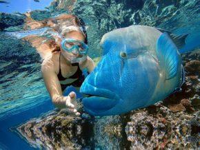 - обладать хорошими навыками плавания,
