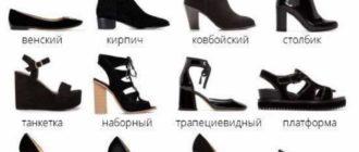 каблуки преимущественно стали использоваться в женском гардеробе