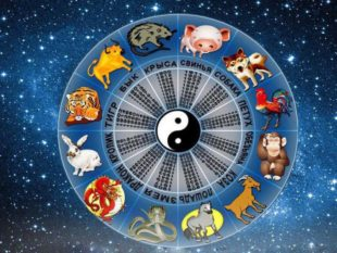 Кто по гороскопу в следующем году Быка получит финансовую стабильность.