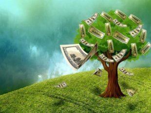 Финансовая независимость – что это и как ее достичь