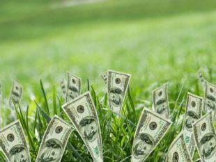 Свечи излучают финансовые потоки зеленоватого